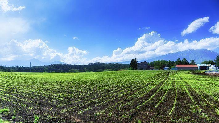 農業経営、頼るなら…実績のある税理士11選!