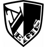 株式会社Aegis