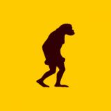 株式会社シンカネット